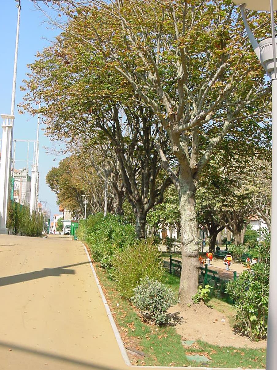 Parc Mazon_04