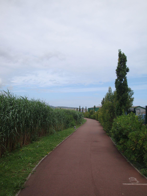 chemin-baie-zone-7-2